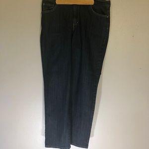 Gloria Vanderbilt 16 Amanda Indigo Jeans